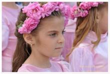 Празник на розата в гр. Стрелча - 2013г.